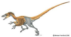 Velociraptor Concept