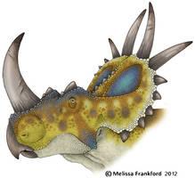 Rubeosaurus by mmfrankford