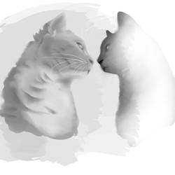 Kitty grayscale study by Pikachaos