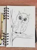 Baby owl by Phendrana-ink