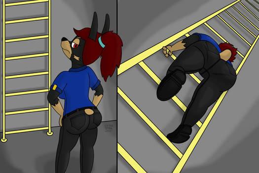 Gratuitous Ladder Shot