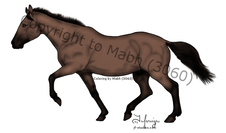 bay horse coloring pages - photo#14