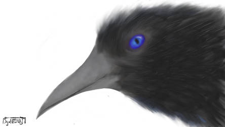 Birds of a Feather by AleenaJ