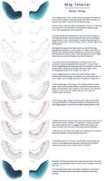 Wing Tutorial - Basic Setup