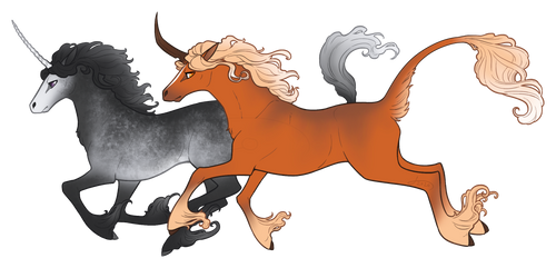 Silver and Gold - Junicorn