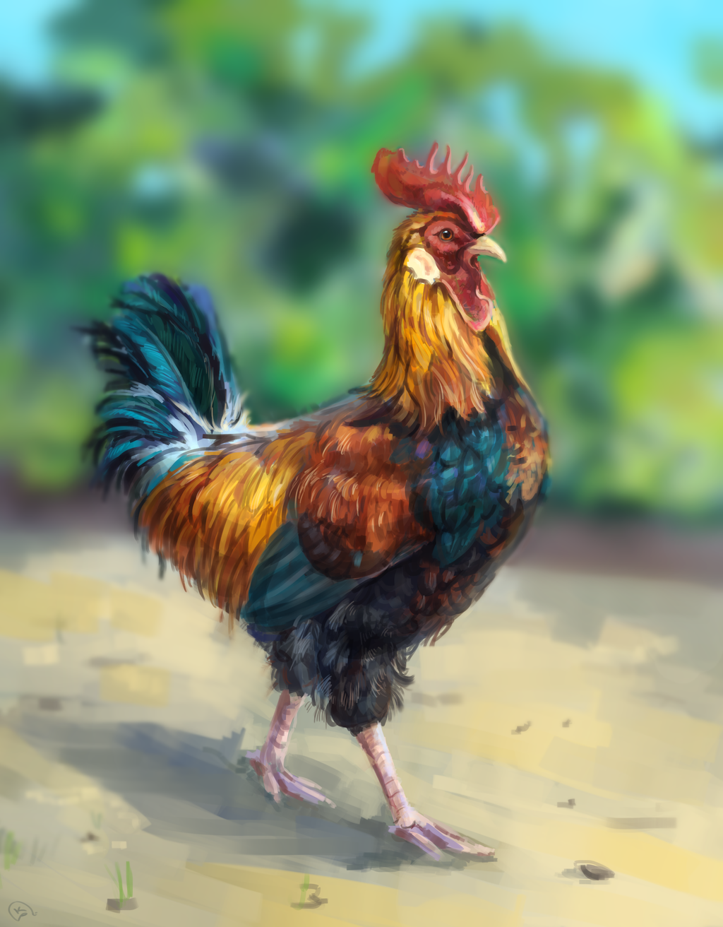 chicken by AlaxendrA