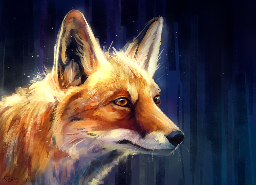 bright fox by AlaxendrA