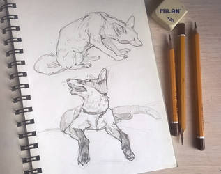 Small sketches by AlaxendrA