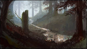 Environment Concept 5: Forest by araml