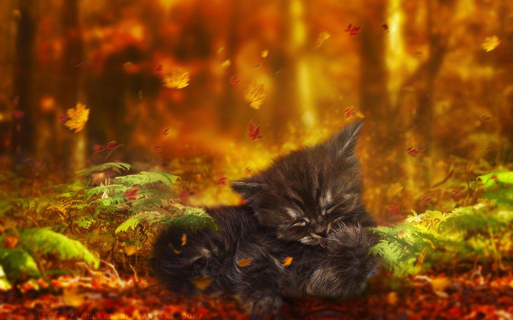 Sweet Autumn by VeilaKs