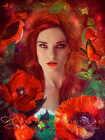 Poppies by VeilaKs