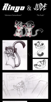 A tale of two sugar gliders by Flying-Foxx