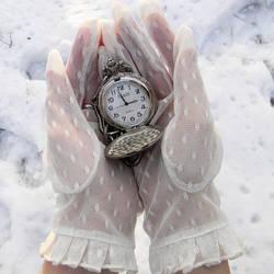 Frozen In Time by MsToygirl