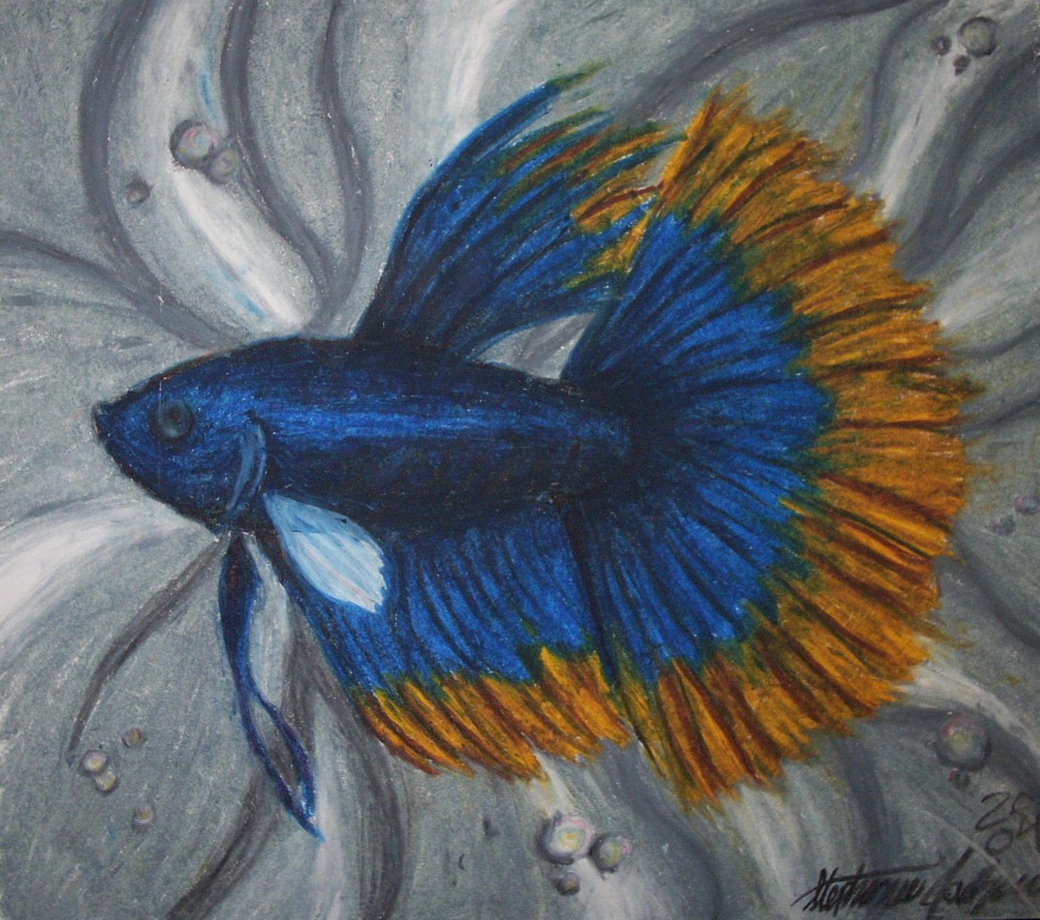 Oil pastel betta by staledemon on deviantart for Easy fish painting