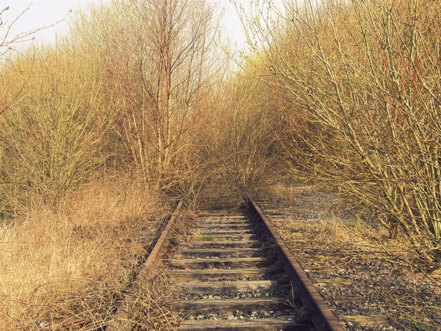 As the tracks disappear