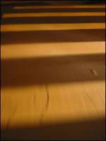 Zebra In Motion by jOELTRON
