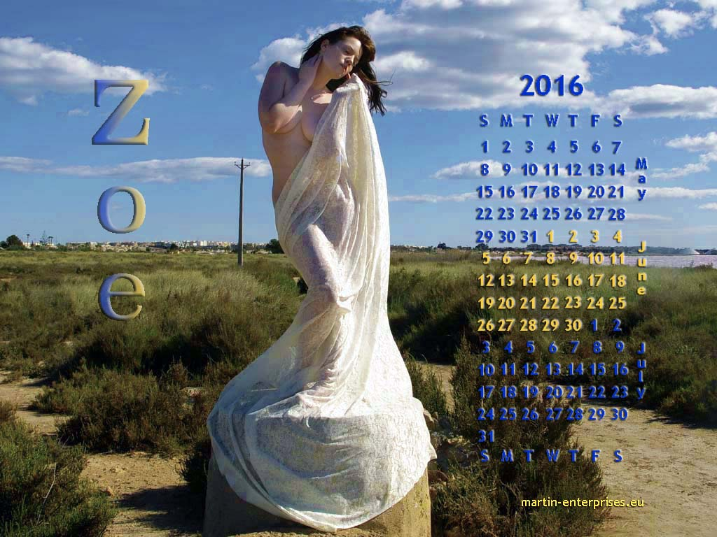 June 2016 calendar by martinrobinson