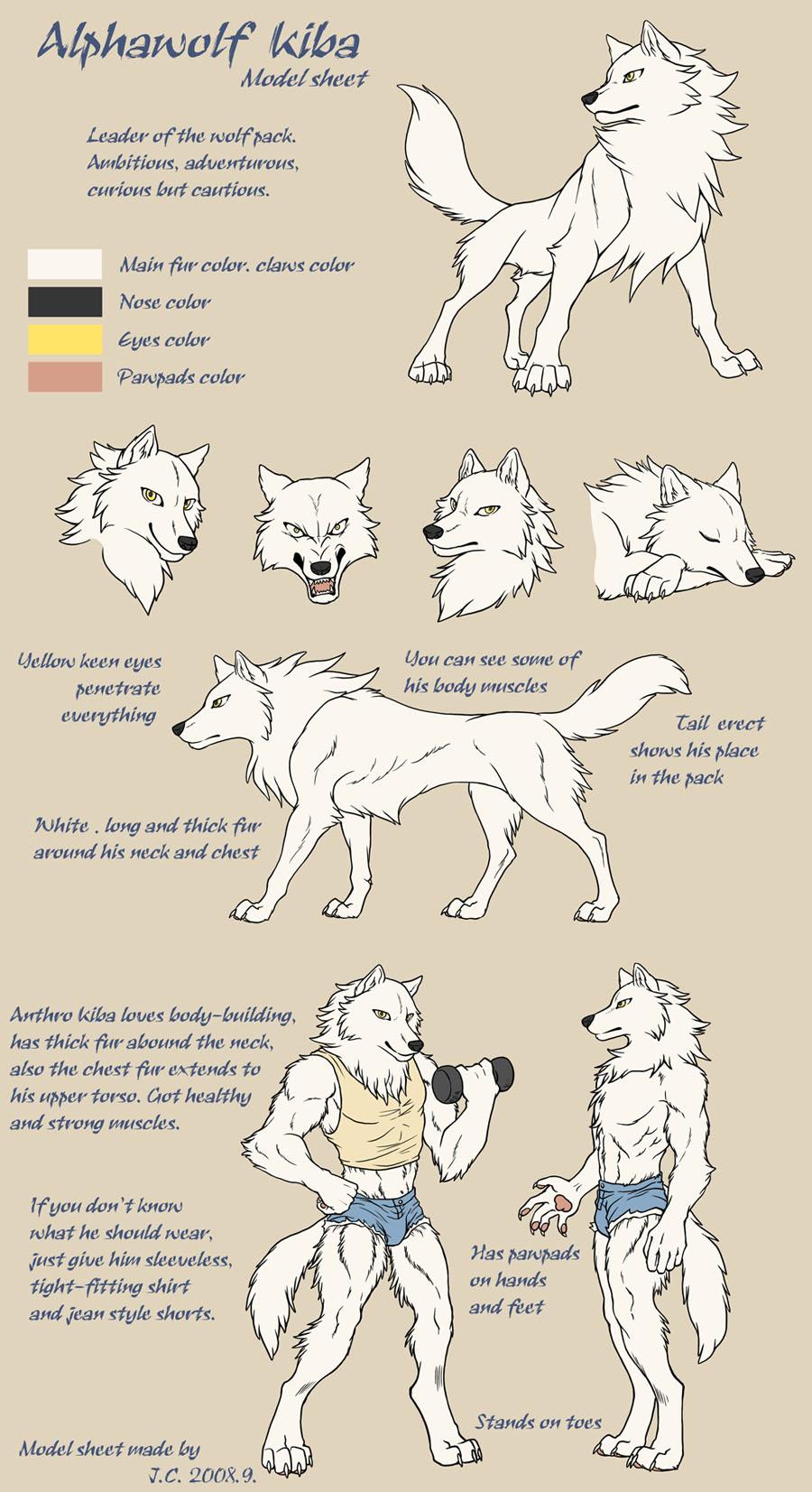Alphawolf Kiba model sheet