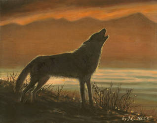 Wolf by J-C