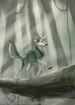 Little spirit in the forest