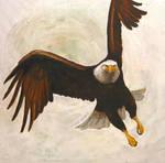 Eagle by J-C