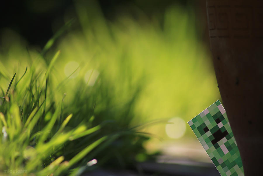 Real Creeper By Easycheuvreuille On Deviantart