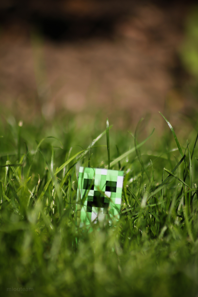 Image Gallery real creeper