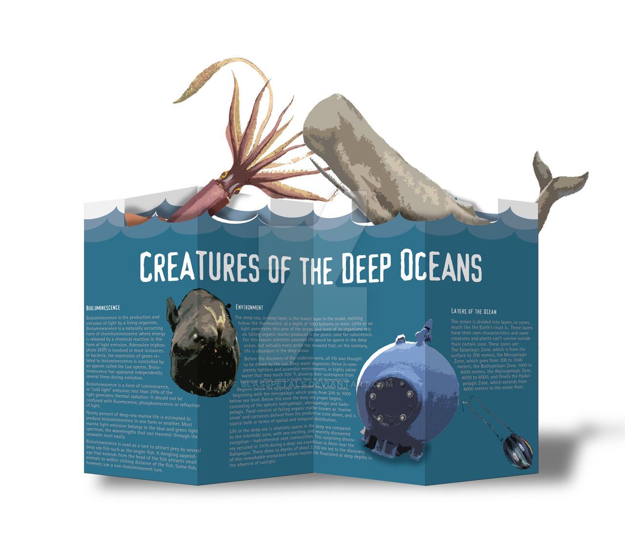 3D popup brochure