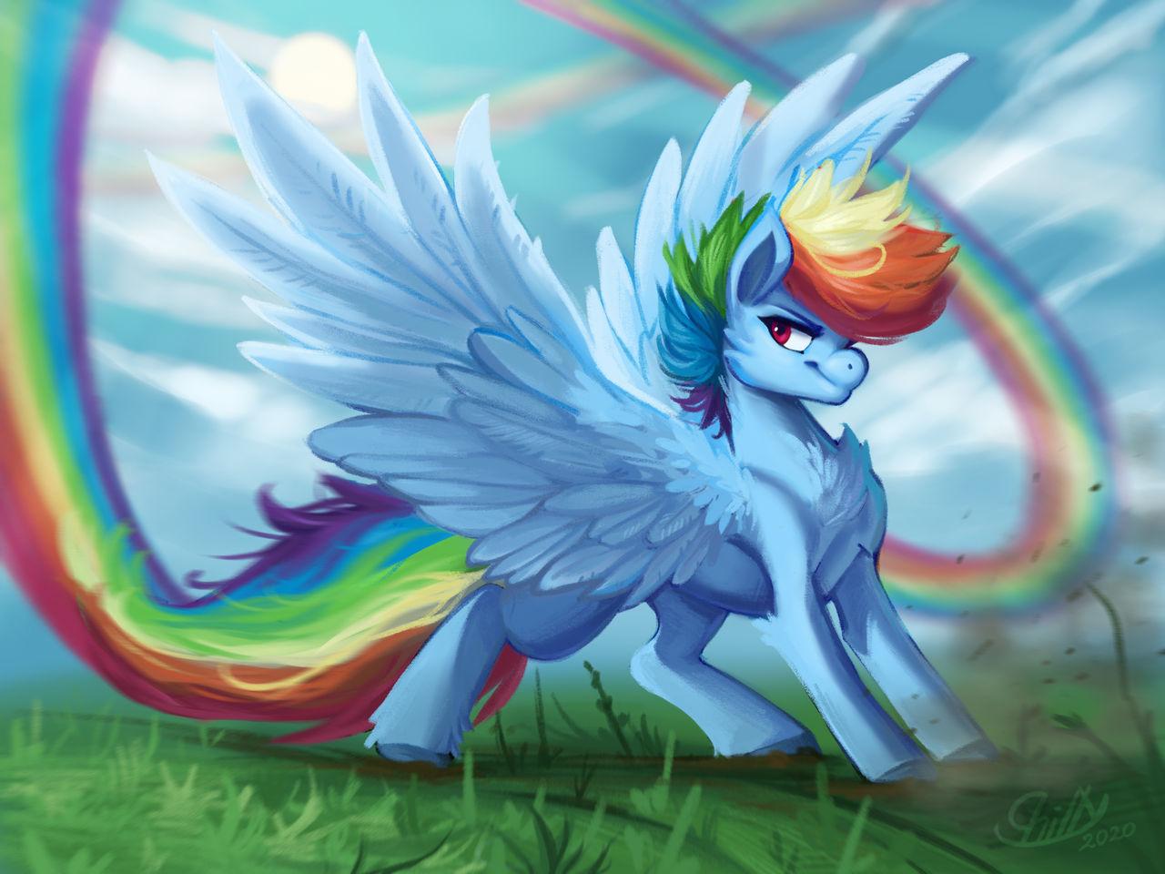 Zoom! - Rainbow Dash fanart by Elku-y8 on DeviantArt