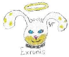 Fan Art - Exrunis Spots by WiccanWT