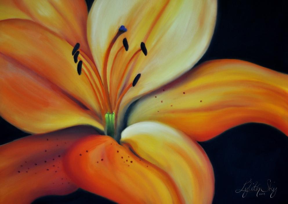 Lily of the Sunset by lylithsky