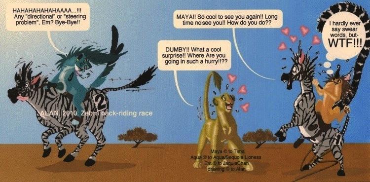 Zebra Race Zebra back-riding race by