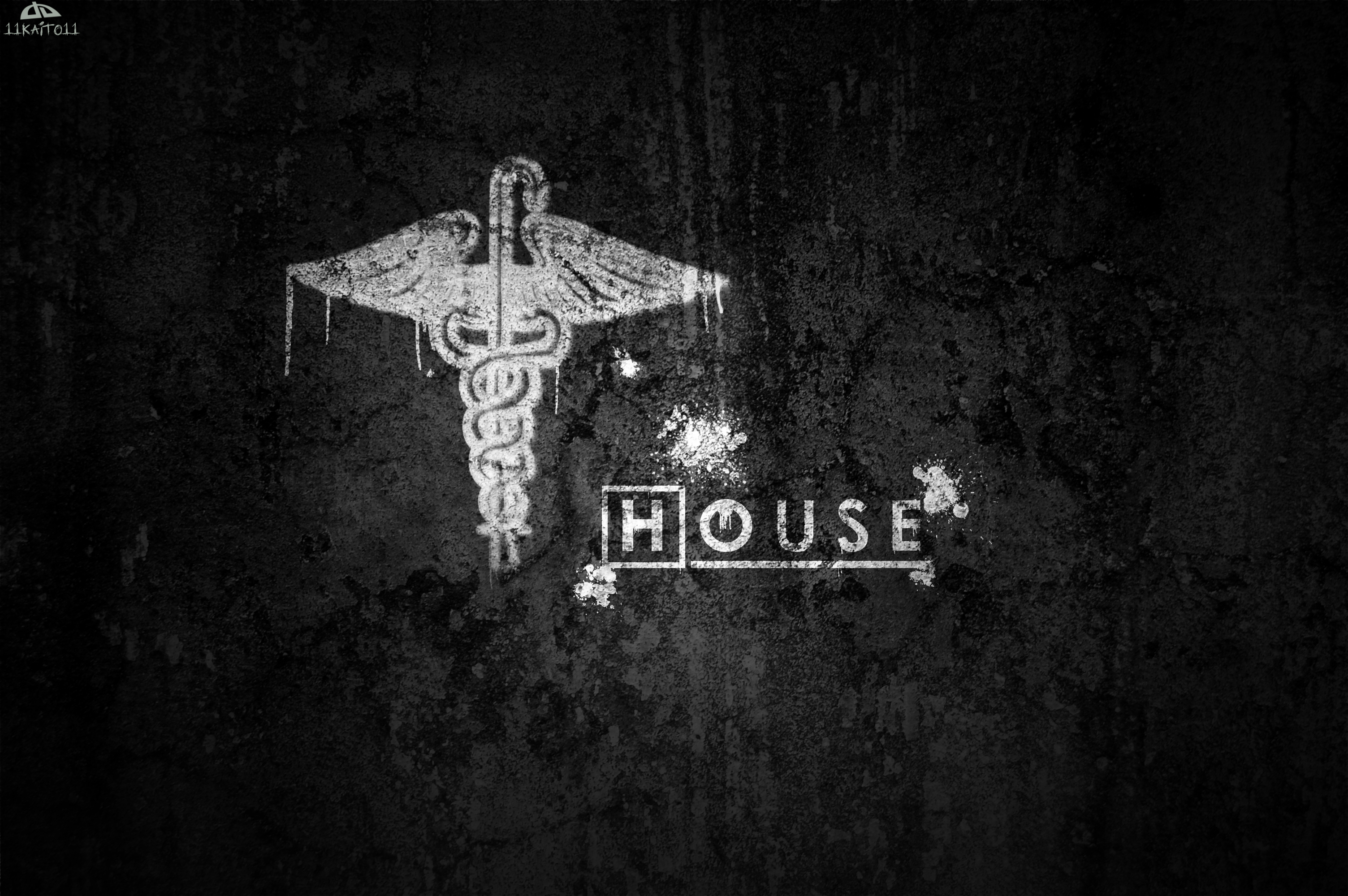 ... Dr. House (Wallpaper 31) by 11kaito11