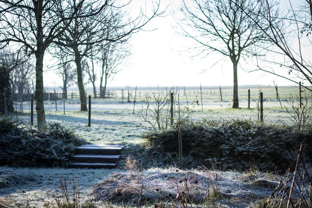 German Winter by ToGa-Design