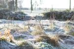 German Winter II