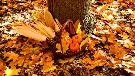 Fall 2018 - Finch Arboretum - Harvest Basket by Ryven