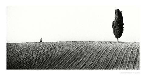 paesaggio - XVI by GiacomoIlari