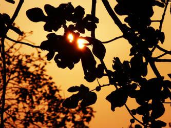 Sun II by FadedIntoTheNight