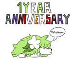 1 Year Aniversary