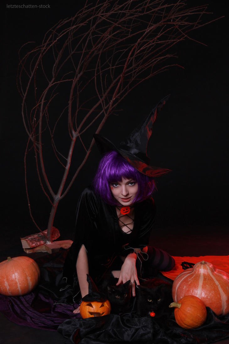 Helloween Witch 1 by LetzteSchatten-stock