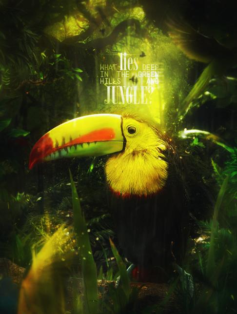 Jungle by Dark7Side