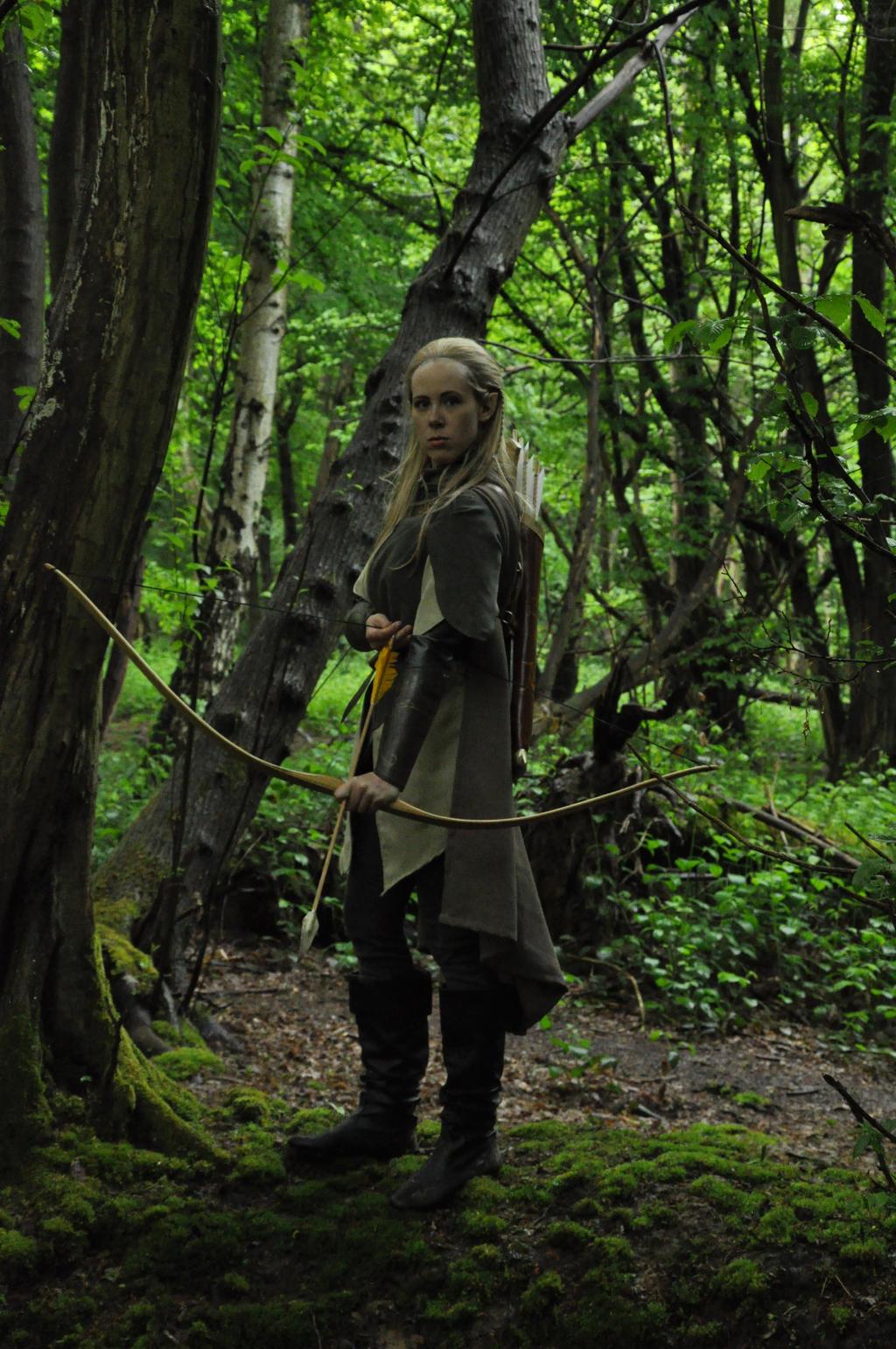 Lady Legolas By LauraTolton