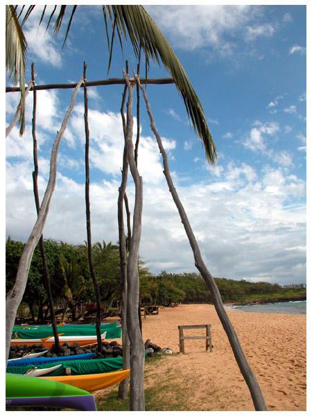 Alone On A Beach by simba