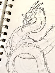 wiiiiiiiip edgy dragon yes