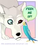 Husky and Parakeet