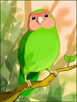 Love Bird by macawnivore