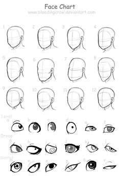 Face Chart by macawnivore