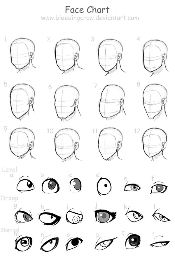 Character Design Head Shapes : Face chart by macawnivore on deviantart