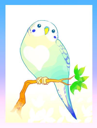 love birds drawings