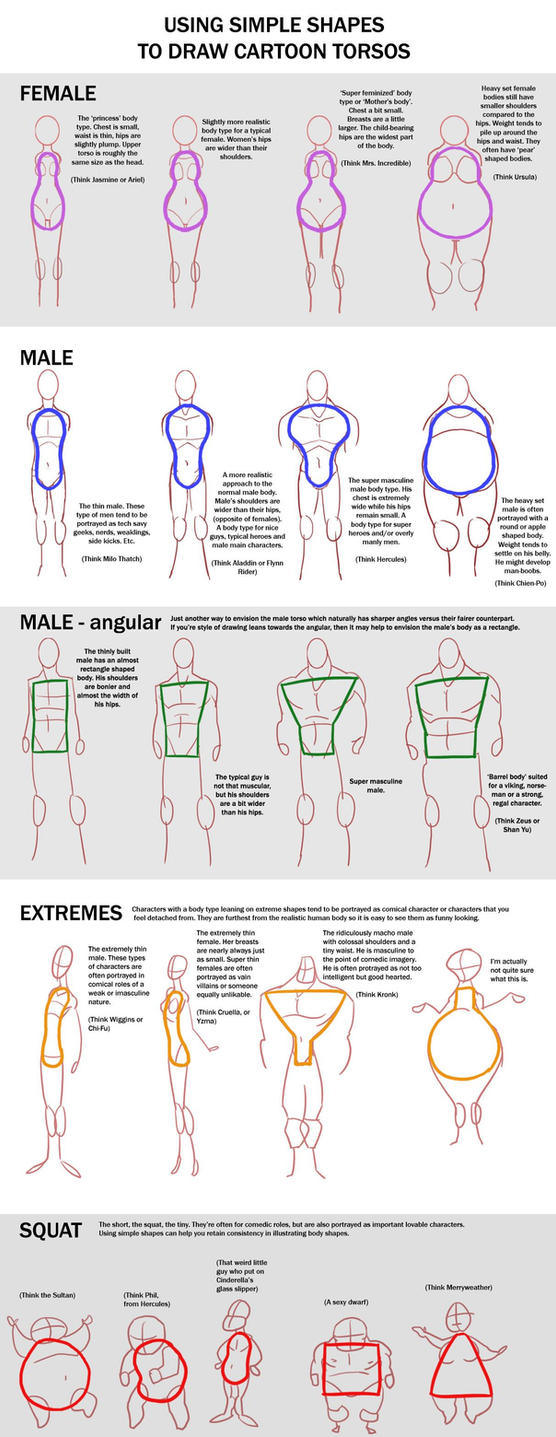 Chart - Cartoon Torso by macawnivore